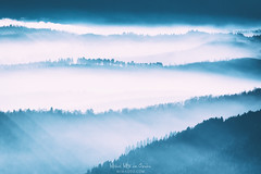 MIsty mountains (Mimadeo) Tags: mountains fog morning valley mist landscape haze nature wilderness mountain outdoor aerial remote far scenery slopes group distant scenic away cold mountainpattern misty hill beautiful atmosphere atmospheric moody mood background many view forest blue foggy
