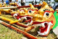 Święto Smoczych łodzi | Dragon Boat Festival | 端午节