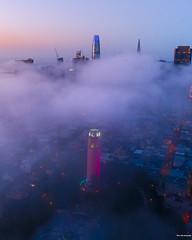Fog City - San Francisco (davidyuweb) Tags: fog city san francisco low coit tower 三藩市 luckysnapshot