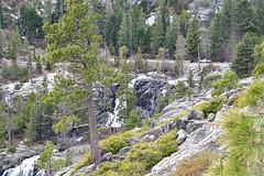 DEH_2617 (sobca) Tags: alpine california laketahoe laketahoebasinnationalforestlands nevada sierramountains emeraldbay
