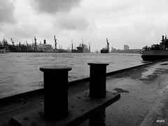 Hamburg_Hafen (5) (strahli79) Tags: hamburg landungsbrücken stpauli reeperbahn grosefreiheit sanktmichaelis elbphilharmonie bw blackandwhite port harbour