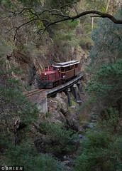 Stringers Creek (Dobpics O'Brien) Tags: stringers creek narrow gauge goldfields walhalla engine diesel locomotive rail railway railways train victorian victoria vr thomson fowler 14