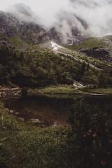 D4C57AD6-141C-4B8B-90E6-5A1F4FA80ABF (jullietserov) Tags: mountain mountains poland zakopane lake nature forest water fog waterfall rain clouds trees bridge