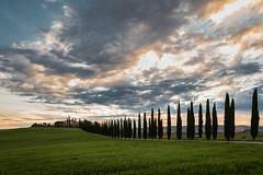 Tuscany (Martin Zurek) Tags: blau tuscany landscapes lanscape landschaf italia italien sunrise sonnenaufgang toskana