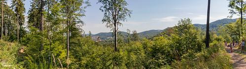 Wycieczka na Górę Borową-23