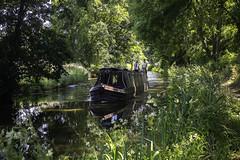 20180708_Lazy Days (Damien Walmsley) Tags: long boats weather hot water summer lazydays wootonwarren warwickshire