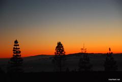 Захід Сонця, Тенеріфе, Канари  InterNetri  317