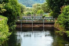 The Weir (The Hobbit Hole) Tags: traisen d700 nature austria österreich nikon weir water 2470mmf28g lowerasutria green