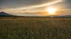 Sunset (andgot1) Tags: sun swiss suiça switzerland see spring sunset sky weeds clouds cloud céu nuvens natur natureza landscape primavera paisagens