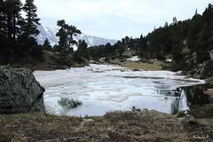 L'eau sous toutes ses formes (Natacha P. Photographie) Tags: water lac montagne mountain paysage alpes nature neige gel lake france landscape