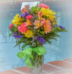 Birthday Flowers (Aliparis) Tags: birthday birthdayflowers 6212018