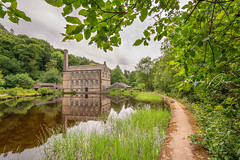 _DSC.0081 - Gibson Mill (SWJuk) Tags: calderdaledistrict england unitedkingdom swjuk uk gb britain yorkshire westyorkshire calderdale hebdenbridge gibsonmill textilemill millbuildings millpond trees woods woodland water flat calm reflections grasses footpath overhanging 2018 jun2018 summer nikon d7100 nikond7100 tokina1116mm wideangle lightroomclassiccc rawnef landscape countryside scenery