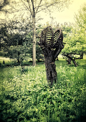 Sphere (Tigra K) Tags: baltimore ohio unitedstates us 2016 grass installation metal otherart sculpture tree village art
