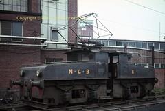 Westoe No 8 1965 img567 (Ernies Railway Archive) Tags: hartoncoalcompany westoe ncb southshields