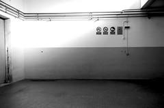 Civitanova Marche - il porto ed altro (enricoerriko) Tags: enricoerriko erriko enrico portocivitanova civitanovamarche murales pescherecci gente people sea pescheria pesciarole mercado mercato streetart colori blù red rosso yellow nyc paris moscow beijing bcn milano riflessi blackwhite colors panorama orizzonte cielo sky azzurro azul indaco green verde black vecchio mare skate pesca pescatori marinai palme bicicletta bici grafica comunicazione rauch bubbico aiap cartacanta 2018 altrestorie produrrememoria eulalia barbara ivano carabiniere pasolini lacicalanelpetto
