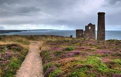 Cornish tin mine near Chapel Porth (Baz Richardson (catching up again)) Tags: cornwall stagnes chapelporth whealcoates tinmines tinprocessingworks tinminingremains northcornwall coast heather gorse