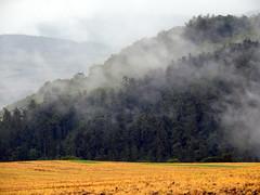 Landscape (markb120) Tags: valley lowland vale dale glen bottom hill mound landscape scenery view scene paysage knoll rise mount height fog mist haze smoke brume toman cloud eddy