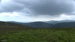 """"""" No Frontiers """" ("""" P@tH Im@ges """") Tags: bracken blanketbog green frontier mountains countywicklow ireland walk trek orienteering glenmalure"""