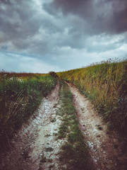 Apocalyptic road (Pásztohy) Tags: road field overcast curve 365 project