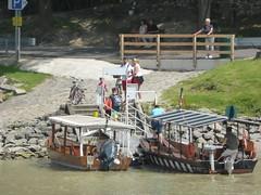Bike Ferries (Cruise Dog) Tags: rivercruise cruise danube