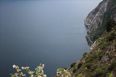 View Down (Gabi Wi) Tags: see lake lagodigarda italy coast küste rocks road strase tunnel sailboats segelboote landscape amelanchier felsenbirne current strömung