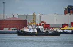 Multratug 16 (Hugo Sluimer) Tags: portofrotterdam port rotterdam zuidholland nederland holland haven nlrtm onzehaven
