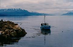 Solo a 1.000 km de  la Antártida (mnovela2293) Tags: ushuaiaargentina canaldel beagle parque nacional tierra del fuego navarinoislascormoranes gaviotas islas