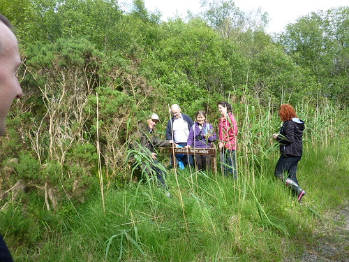 IRWC visits Turraun Wetlands, Co. Offaly, July 2013