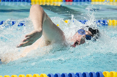 SONC SummerGames18 Tony Contini Photography_1260 (Special Olympics Northern California) Tags: 2018 summergames swimming swimmer athlete maleathlete water specialolympics
