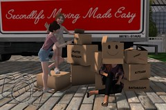 Life in boxes (QuinsRose) Tags: lumipro lumi family friends love home personal secondlife pose photography sl