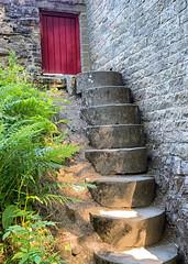 Grindstone steps. (S.K.1963) Tags: elements grindstone steps red door mill ferns sheffield england olympus pen f shepherds wheel 17mm 18