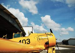 T-6 (Antônio A. Huergo de Carvalho) Tags: north american northamerican t6 t6g prteb texan aviation aircraft airplane aviação avião classic clássico warbird céu sky world