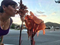 191/365 (boxbabe86) Tags: walking monday july iphone shadowpines selfie 365days flower