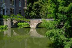 TerWorm Castle (RIch-ART In PIXELS) Tags: kasteelterworm heerlen zuidlimburg thenetherlands fujifilmxt20 xt20 castle chateau building bridge water moat tree buildingstructure