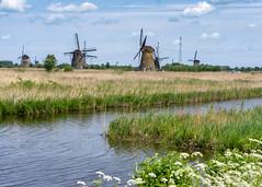 Windmills, Kinderdijk, Molenwaard, Netherlands (rmk2112rmk) Tags: windmills kinderdijk molenwaard netherlands windmill holland dutch dike landscape