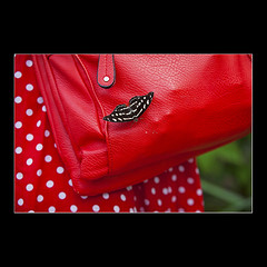 Butterfly Air Strip (KoenK68) Tags: butterfly insect animal leather bag dress dots red canon ©koenk68