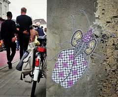 #loveisforeveryone / #art by #PolCosmo. . #Gent #Belgium #streetart #graffiti #urbanart #graffitiart #streetartbelgium #graffitibelgium #visitgent #urbanart_daily #graffitiart_daily #streetarteverywhere #streetart_daily #ilovestreetart #igersstreetart #ge (Ferdinand 'Ferre' Feys) Tags: instagram polcosmo pasteup wheatpaste gent ghent gand belgium belgique belgië streetart artdelarue graffitiart graffiti graff urbanart urbanarte arteurbano ferdinandfeys