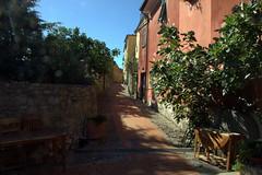 Cafaggio e Montemarcello fraz. di Ameglia (La Spezia)02 (vastano.g) Tags: vacanze vie montemarcello liguria laspezia