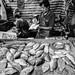 Fish monger, Sunday Morning Market, Chiang Mai, Thailand