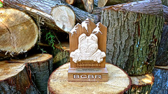 Trail-Trip-Canada-Konstructive-Dream-Bikes-BC-Bike-Race-2nd-place-Trophy