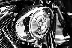 Screamin' Eagle (G. Postlethwaite esq.) Tags: bw bakewell dof derbyshire harleydavidson screamineagle airfilter blackandwhite bokeh closeup depthoffield engine fullframe monochrome motorbike motorcycle photoborder photowalk selectivefocus