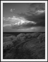 track by the ocean (Andrew C Wallace) Tags: track ocean ir infrared thephotontrap microfourthirds m43 olympusomdem5 kilcunda victoria australia clouds blackandwhite bw