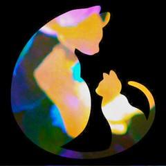 Cute pussies #shilouettes #flowers #popart #pop #fanart #psychedelic #trippy #strange #surreal #sublime #art #beautiful #creative #creativity #digitalart (muchlove2016) Tags: shilouettes flowers popart pop fanart psychedelic trippy strange surreal sublime art beautiful creative creativity digitalart