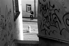 Clown (Leica M6) (stefankamert) Tags: stefankamert street clown people blur blurry graffiti wall leica m6 leicam6 kodak trix film grain mood analog summicron dr dualrange tübingen