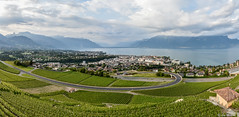 Panorama Vevey Riviera (lmorisod) Tags: vaud vevey vignes ciel nikon nikond750 nature lac léman lake lacléman lémanlacveveyrivierasuisseswtzerland riviera romandie romand romande rivage montagne montreux corsiersurvevey switzerland suisse bleu