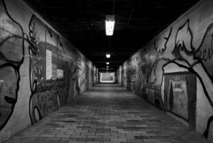 (Oliver Zimmermann) Tags: absence alley arcade architecture building builtstructure ceiling corridor diminishingperspective direction electriclamp electriclight empty footpath graffiti illuminated indoors light lightfixture lightingequipment long nopeople thewayforward tunnel wallbuildingfeature