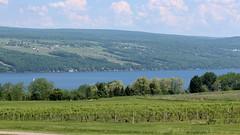 Lake Seneca 05_29_18_01 (Milt d:-)) Tags: lake seneca