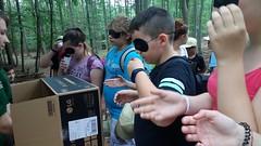 WaldjugendspieleGfoehlJuni2018-004