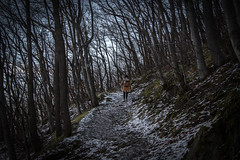 Vitosha Mountain, Sofia (Adrià Páez) Tags: vitosha mountain sofia dark nature snow vegetation trees bare path girl bulgaria europe balkans winter canon eos 7d mark ii