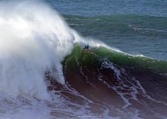 NIC LAMB / 5910HKE (Rafael González de Riancho (Lunada) / Rafa Rianch) Tags: surf waves surfing olas sport deportes sea mer mar nazaré nazaréchallangebigwaves 海の沿岸をサーフィンスポーツ 自然 海 ポルトガル heʻe nalu palena moana haʻuki kai olahraga laut pantai alam nazarébigwaveschallenge vagues ondas portugal playa beach